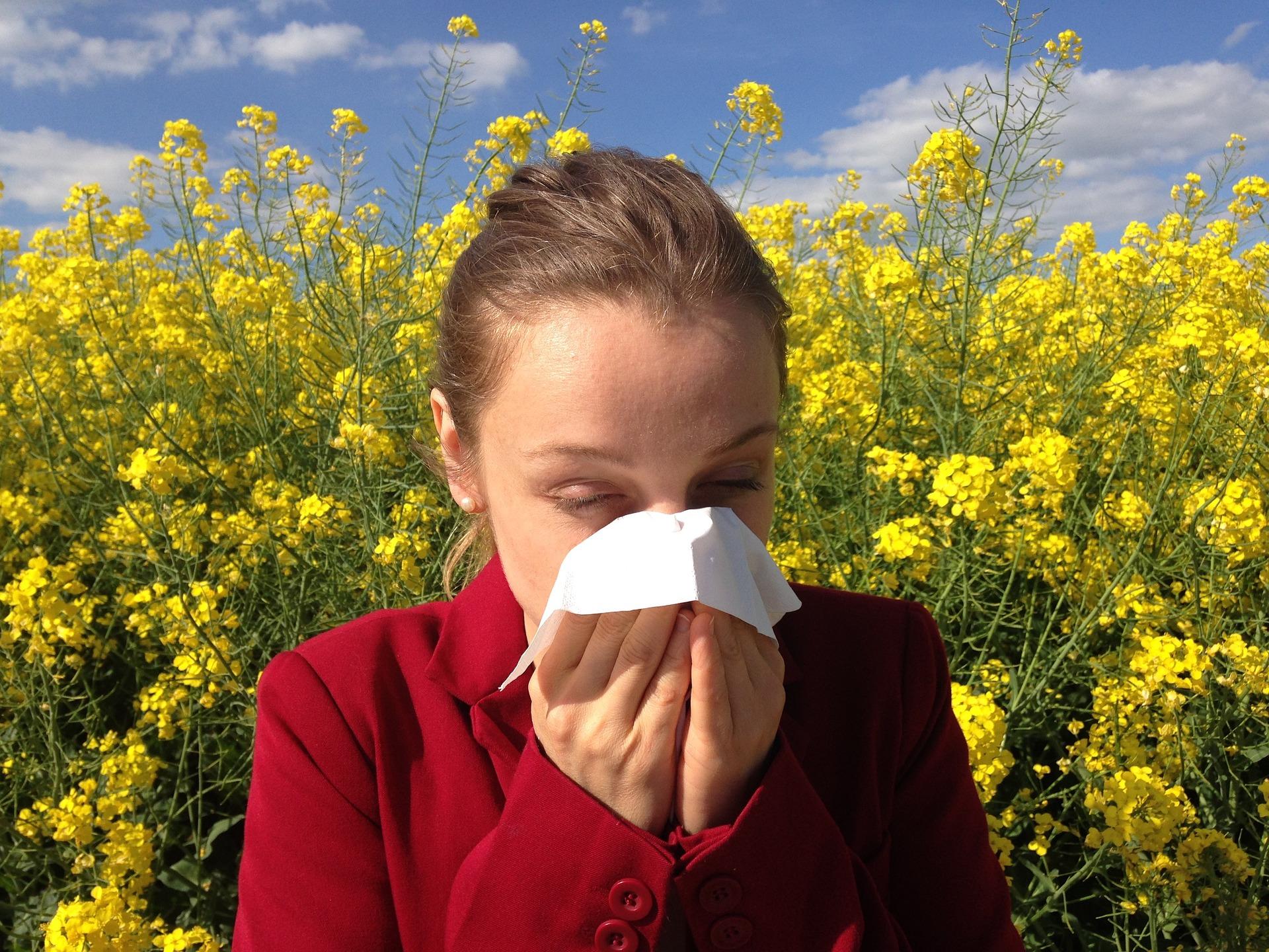 Pollenschutz für Allergiker   fliegengitter mit Pollenschutz